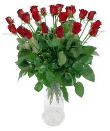 Trabzon çiçek siparişi vermek  11 adet kimizi gülün ihtisami cam yada mika vazo modeli