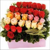 15 adet renkli gül ve cam   Trabzon 14 şubat sevgililer günü çiçek