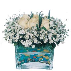 Trabzon 14 şubat sevgililer günü çiçek  mika yada cam içerisinde 7 adet beyaz gül