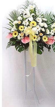Trabzon kaliteli taze ve ucuz çiçekler   perförje çiçegi dügün çiçekleri