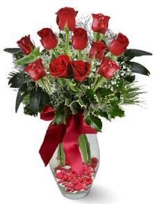 9 adet gül  Trabzon hediye sevgilime hediye çiçek  kirmizi gül