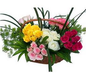 Trabzon cicekciler , cicek siparisi  35 adet rengarenk güllerden sepet tanzimi