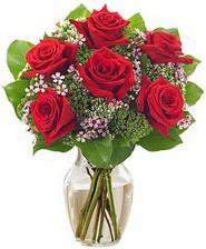 Kız arkadaşıma hediye 6 kırmızı gül  Trabzon çiçek servisi , çiçekçi adresleri