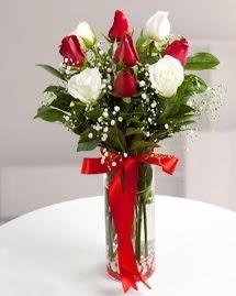 5 kırmızı 4 beyaz gül vazoda  Trabzon yurtiçi ve yurtdışı çiçek siparişi