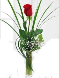 Cam içerisinde 1 kırmızı gül  Trabzon internetten çiçek satışı