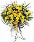 Trabzon ucuz çiçek gönder  Sari kazablanka Ferforje
