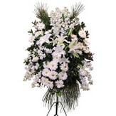 Trabzon güvenli kaliteli hızlı çiçek  Ferforje beyaz renkli kazablanka