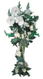 Trabzon çiçekçi telefonları  antoryumlarin büyüsü özel