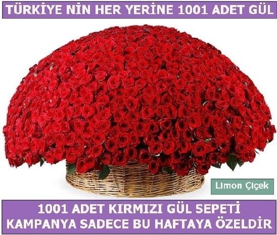 1001 Adet kırmızı gül Bu haftaya özel  Trabzon çiçek siparişi sitesi