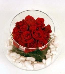 Cam fanusta 11 adet kırmızı gül  Trabzon internetten çiçek siparişi