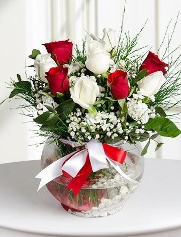 Aşk Küresi  5 beyaz 5 kırmızı gül fanusta  Trabzon hediye sevgilime hediye çiçek