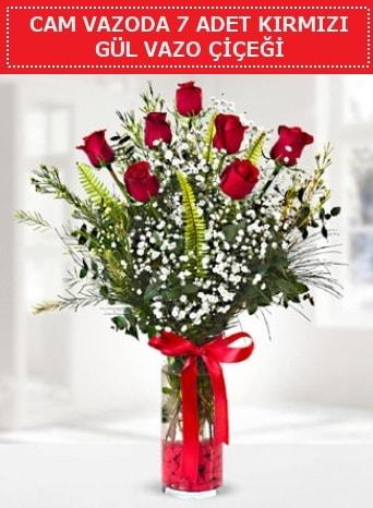 Cam vazoda 7 adet kırmızı gül çiçeği  Trabzon internetten çiçek satışı