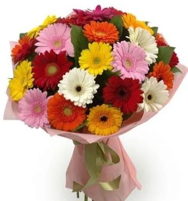 Karışık büyük boy gerbera çiçek buketi  Trabzon online çiçek gönderme sipariş